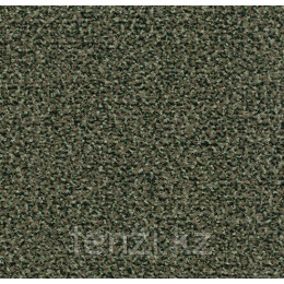 Forbo Coral Classic - Olive